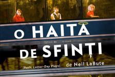 Banner haita
