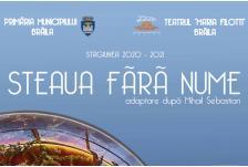 Banner steaua