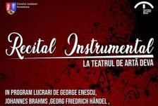 Recital instrumental deva front