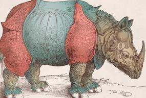 Rinocerii matei visniec front