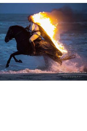 Povestea calului afis