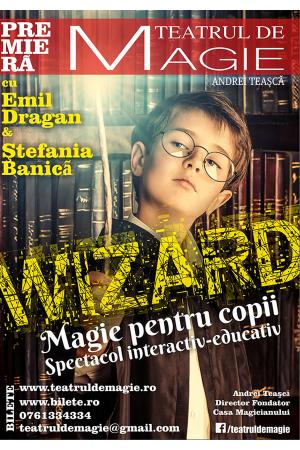 Magie pentru copii wizard magic show