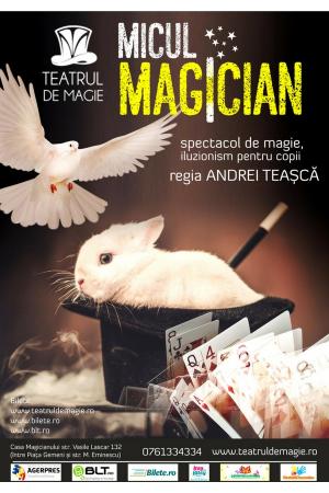 Micul magician teatrul de magie