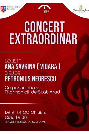 Concert extraordinar deva afis